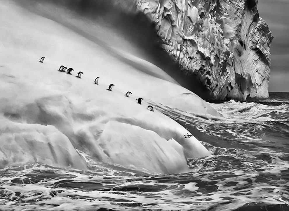 Sandwich Islands, 2009