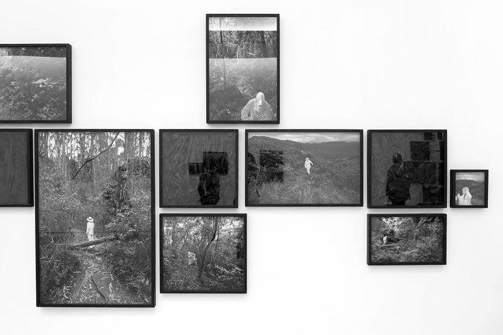 Sobre natureza - Pedro Motta, 2016