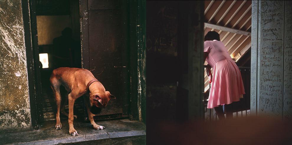 La bodeguita, 1994