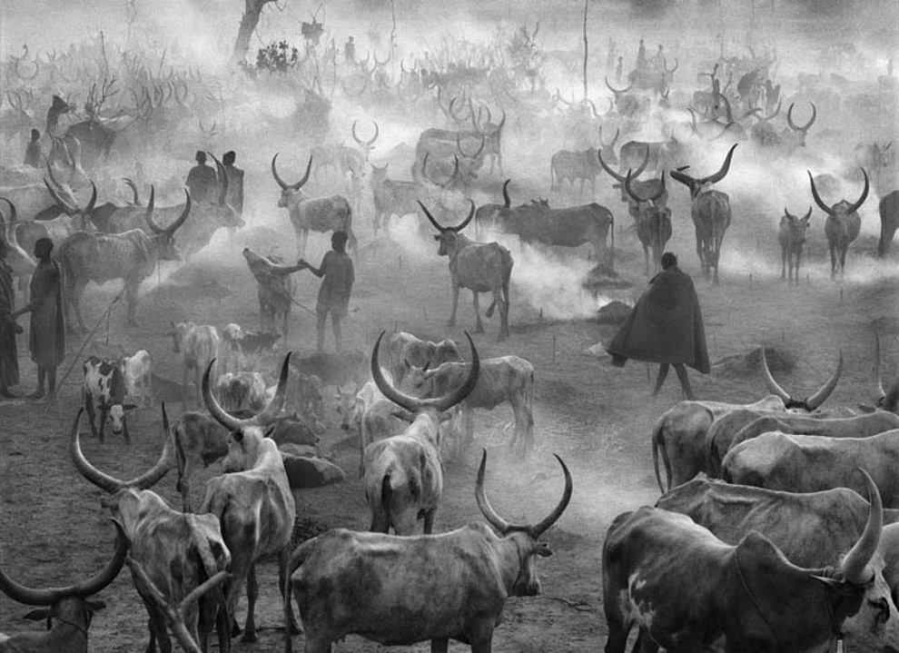 Dinka Cattle Camp (South Sudan), 2006