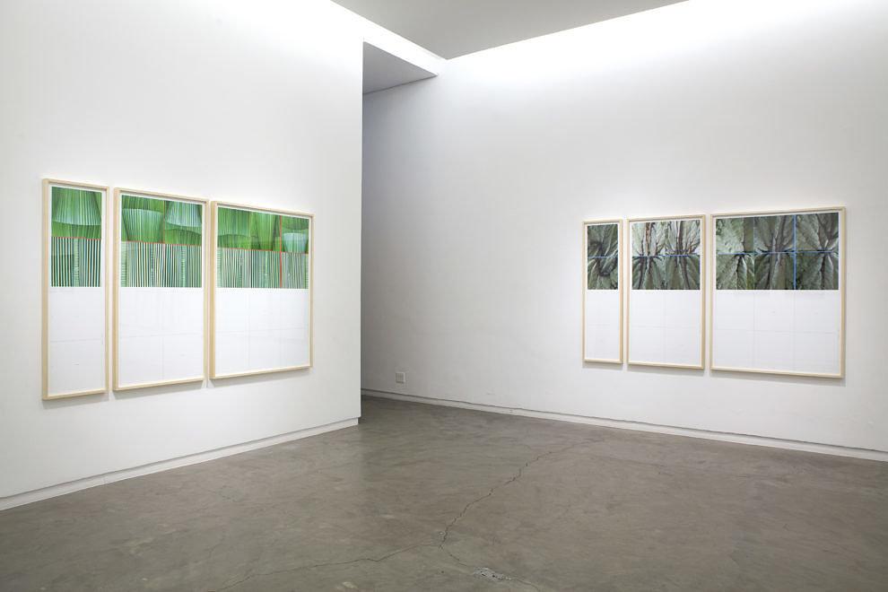 Chiara Banfi - Aquele Dsico, 2018