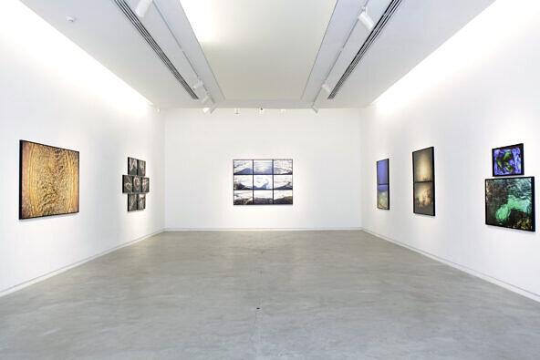 Exhibition —Flutuações