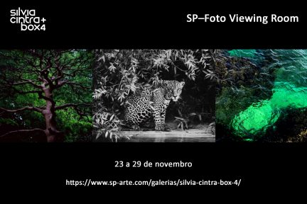 Feira — SP Foto Viewing Room 2020