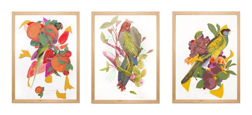 Pássaros em Paságarda, 2020