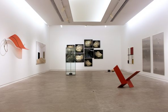 Exhibition —Gallery Collection