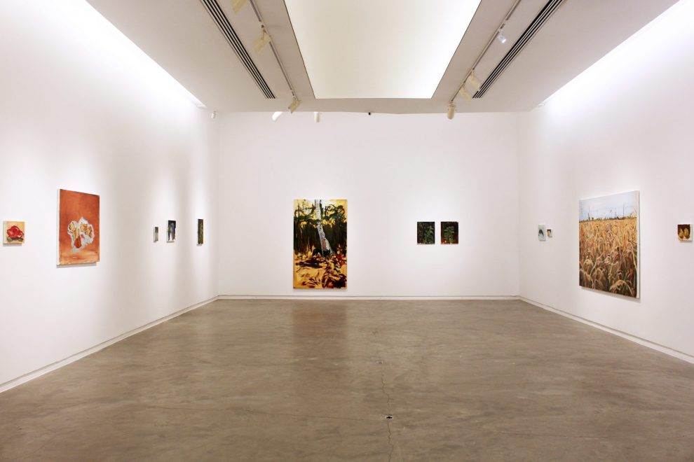Vista da exposição Paisagem com Casinha 2, 2021